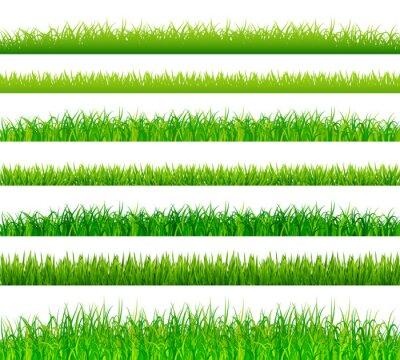 Vinilo Fronteras de pasto verde conjunto