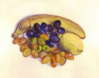Vinilo Fruta, uva, limón, plátano. Pintura de acuarela
