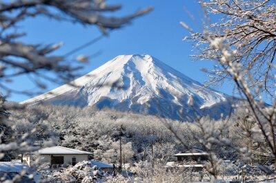 Vinilo Fuji