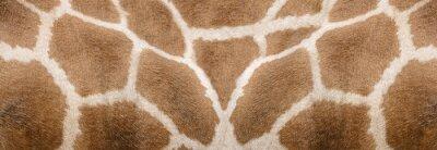 Vinilo Giraffe skin Texture - Image 1