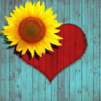 Vinilo girasol flor del corazón y de la turquesa de fondo de madera