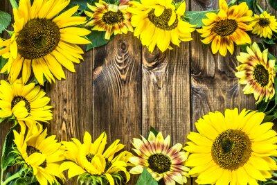 Vinilo Girasoles sobre fondo de madera rústica. Flores de fondo.