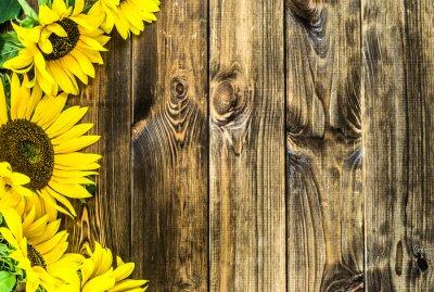 Vinilo Girasoles sobre fondo de madera rústica. Flores de fondo con copia espacio