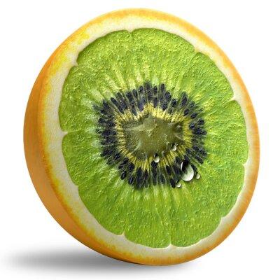 Vinilo GMO Concept.
