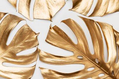 Vinilo Golden monstera leaves on white background