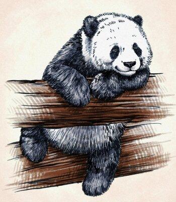 Vinilo Grabar tinta dibujar panda ilustración