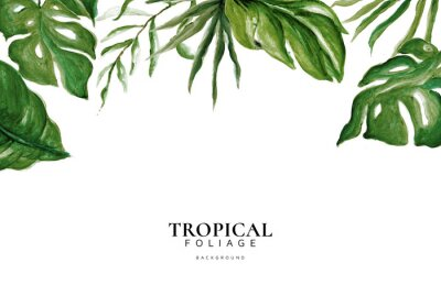 Vinilo Hand Drawn Watercolor Tropical Leaves, Tropical Exotic Leaves, Background, Urban Jungle, House Plant