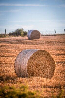 Vinilo Haystacks en un campo