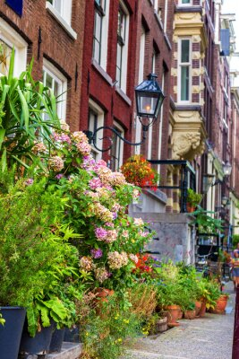 Vinilo Hermosa casa en Amsterdam