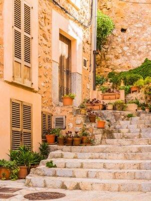 Vinilo Hermosa decoración de plantas en un pueblo de montaña en España