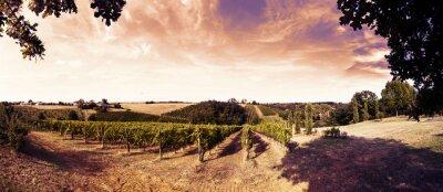 Vinilo Hermosa puesta de sol sobre los viñedos en toscana