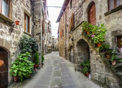 Vinilo Hermosa vista de las antiguas casas tradicionales y idílico callejón en la histórica ciudad de Vitorchiano, Viterbo, Lacio, Italia