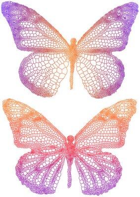 Vinilo hermosas mariposas