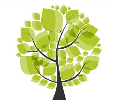 Vinilo Hermoso árbol verde sobre un fondo blanco Ilustración vectorial.