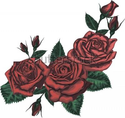 Vinilo Hermoso ramo de rosas rojas. Arte realista del vector - rosas rojas sobre fondo blanco. - Elemento de diseño para tarjeta de felicitación.