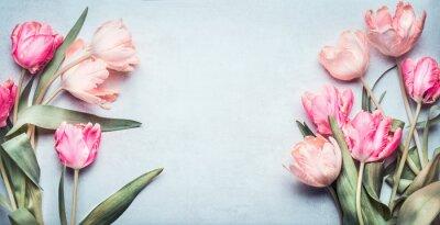 Vinilo Hermosos tulipanes en color rosa pastel sobre fondo azul claro, vista superior, marco, frontera. Preciosa tarjeta de felicitación con tulipanes para el día de la madre, boda o evento feliz