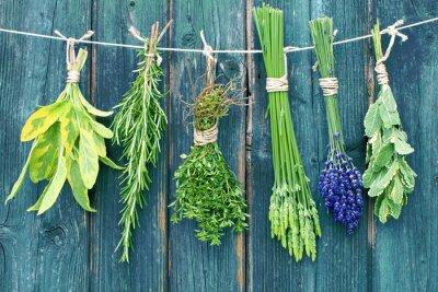 Vinilo hierbas