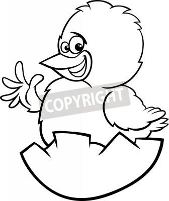 Historieta blanco y negro ilustración de pollo divertido o polluelo ...