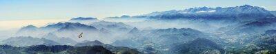 Vinilo Hochgebirge mit Gänsegeier im Nebel (Picos de Europa, Asturias, España)
