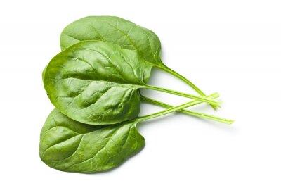Vinilo hojas de espinaca verde