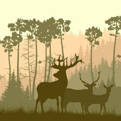 Vinilo Ilustración cuadrada de alces salvajes en el borde del bosque.