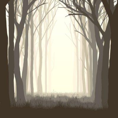 Vinilo Ilustración cuadrada glade en el bosque.