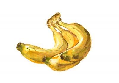 Vinilo Ilustración de acuarela pintada a mano de un plátano
