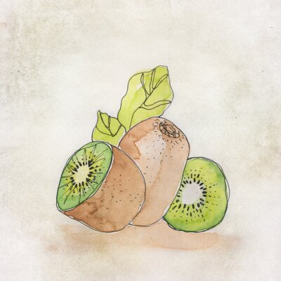 Vinilo Ilustración de la fruta con la acuarela