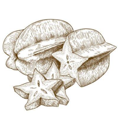Vinilo ilustración grabado antiguo de carambola