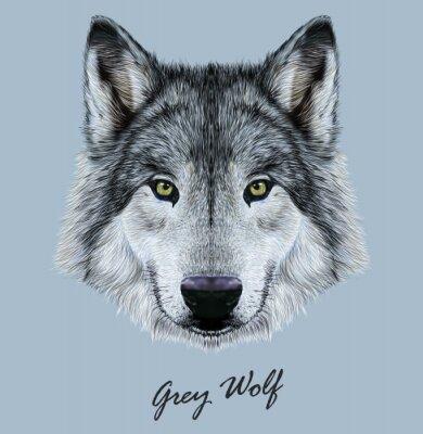 Vinilo Ilustración vectorial digital Retrato de un lobo.