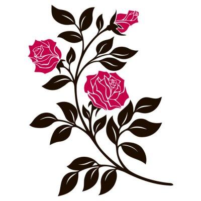 Vinilo Ilustración vectorial, elemento de decoración, rama de rosa blanco y negro con flores rojas