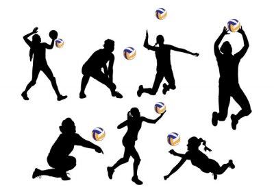 Vinilo Ilustración vectorial fondo gráfico jugadores de voleibol deporte