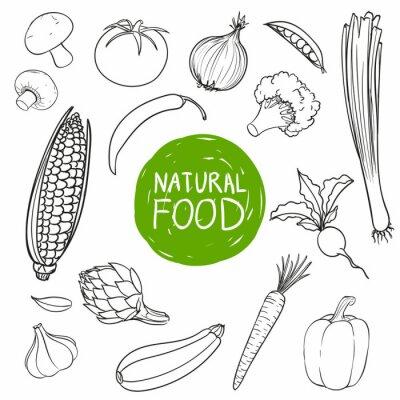 Vinilo Ilustraciones Vectoriales de Hand Drawn Vegetables