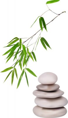 Vinilo isolated grey stones and green bamboo illustration