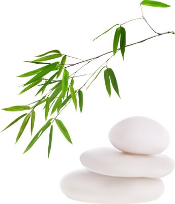 Vinilo isolated white stones and green bamboo illustration