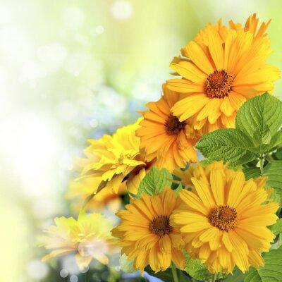 Vinilo kwiaty
