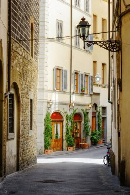 Vinilo La calle Via Lambertesca en el centro histórico de Florencia, Italia