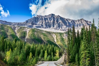 Vinilo La carretera en el Parque Nacional Yoho en Canadá