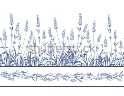Vinilo La línea de cuadros Lavender Seamless. Ramo de flores de lavanda sobre un fondo blanco. Ilustración vectorial