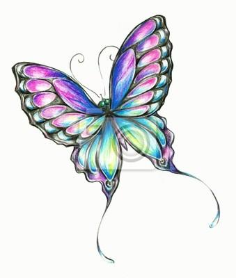 Lápices De Colores De La Mariposa Vinilos Para Portátiles Vinilos
