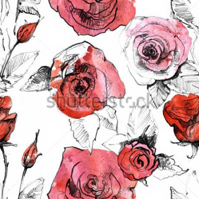 Vinilo Lápiz, acuarela dibujada mano realista rosa roja flor patrón transparente. Ilustración botánica de la pintura del arte. Diseño vintage para cuaderno de dibujo, libro de viaje, tarjeta de felicitación,