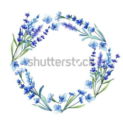 Vinilo Lavanda azul. Flor botánica floral Marco de flores silvestres de hoja de primavera salvaje en un estilo acuarela. Aquarelle wildflower para fondo, textura, patrón de envoltura, marco o borde.