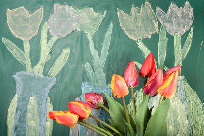 Vinilo Live flowers and children's chalk drawing of tulips on a blackboard