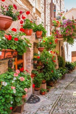 Vinilo Lleno de porche de flores en la pequeña ciudad de Italia, Umbría