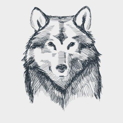 Vinilo Lobo cabeza grunge dibujado a mano ilustración vectorial boceto