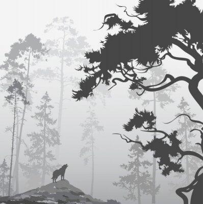 Vinilo Lobo en el bosque