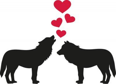 Vinilo Lobos enamorados