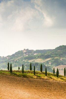 Vinilo Los campos en Toscana