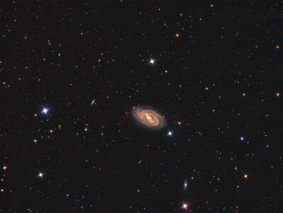 Vinilo M109 Galaxy con un telescopio y una cámara CCD científica