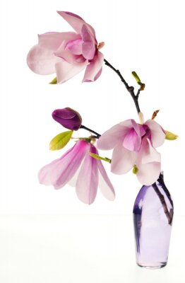 Vinilo Magnolia Jane Flores
